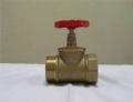 Клапан пожарный латунный прямоточный КПЛП 65-1